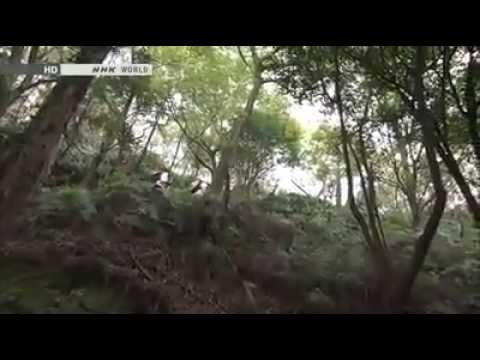 NHK, Journeys in Japan OHENRO Part 2 of 8