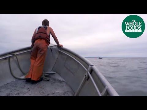Sockeye Salmon   Seafood   Whole Foods Market
