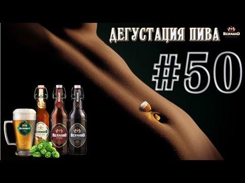 Дегустация пива #50 - 3 сорта чешского пива Bernard! 18+