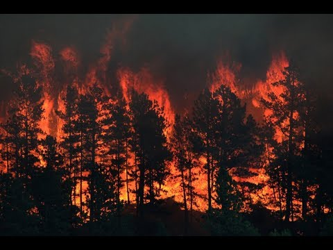 Montana GOP Claims Wildfires Are The Fault Of 'Environmental Extremists'