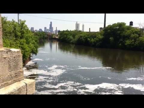 Pollution in Chicago River