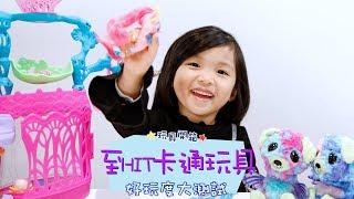 玩具開箱:至HIT卡通玩具   好玩度大測試│shemom