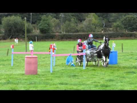 Irish National Championship  Rathdrum 2013  Dorothy Kelly Obs 6
