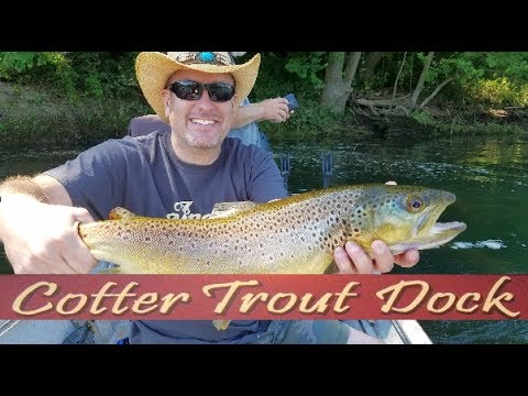 Arkansas white river trout fishing report june 28 2017 for White river arkansas fishing report