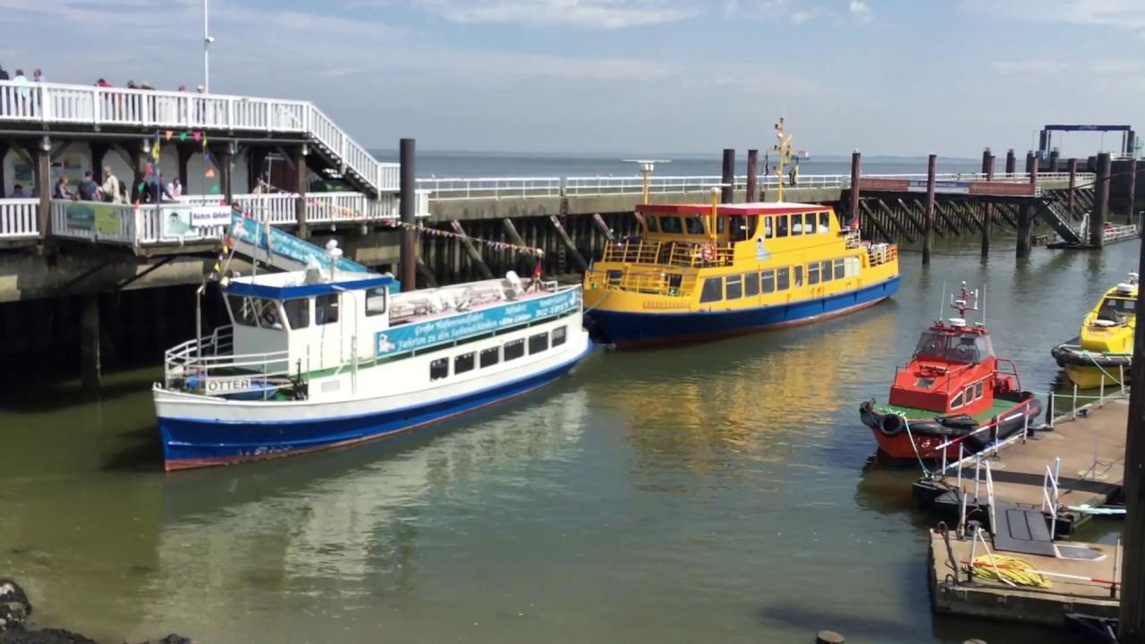 Hafenrundfahrt + Seehundbänke Cuxhaven - YouTube