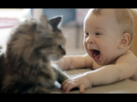 Αστεία Βίντεο   Αστεία βίντεο με μωρά
