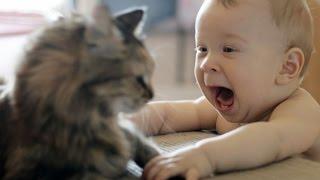 Repeat youtube video Αστεία Βίντεο | Αστεία βίντεο με μωρά