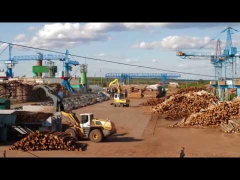 Uvadrev Holding - Wood processing production in Russia