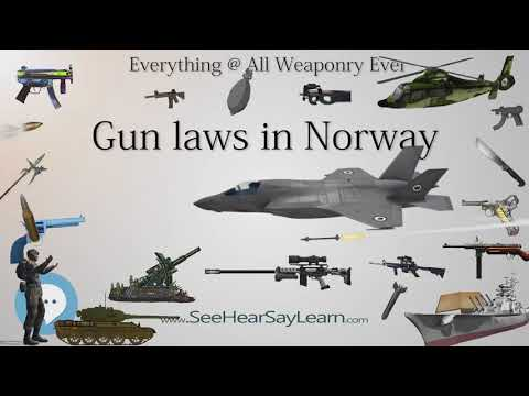 Gun laws in Norway (Everything WEAPONRY & MORE)💬⚔️🏹📡🤺🌎😜✅