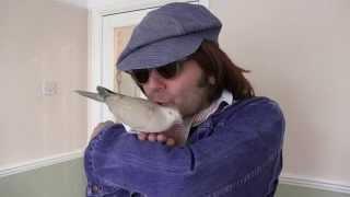 WOW!!! - John Lennon - Dont Let it Die