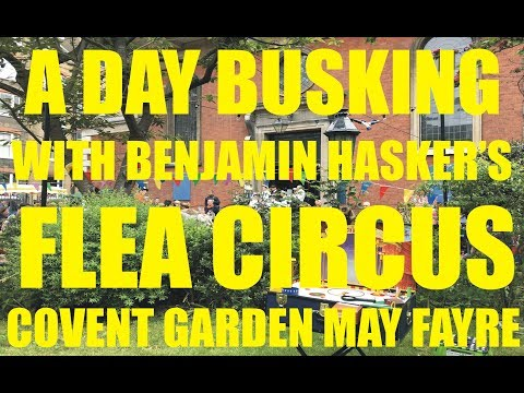 A Day Busking With The Flea Circus At Covent Garden May Fayre