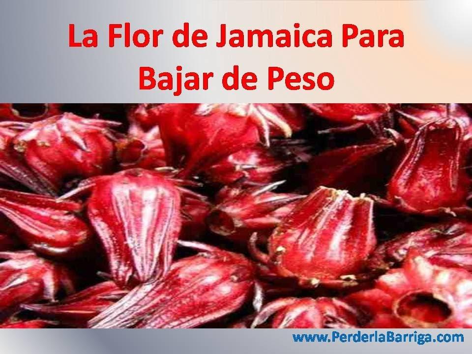 agua de flor de jamaica para bajar de peso