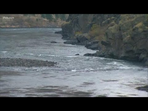 Idaho Fish And Game Commission Approves Deal To Open Steelhead Fishing Season