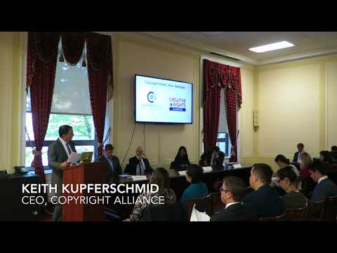 Copyright Alliance Piracy Panel on the Hill - Video 3