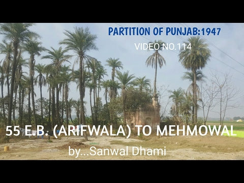 PARTITION OF PUNJAB:1947,VIDEO 114,CHAKK 55 E.B. NEAR ARIFWALA