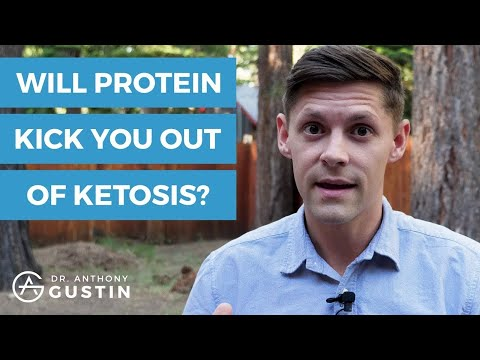 Gluconeogenesis (Can You Eat Too Much Protein On Keto?)