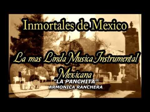 Autentica Musica Mexicana Instrumental Exitos Añejos Con Varios Artistas Youtube