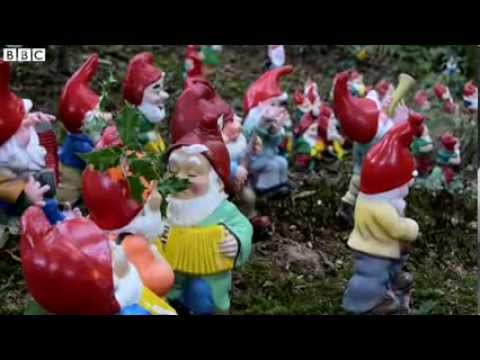 BBC News The woman obsessed with gnomes