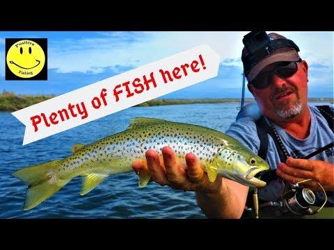 Fishing NZ Day 13: Waiau River  Mouth, Southland, New-Zealand