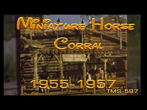 Youtube Miniature Horse Corral