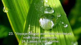 Gambar cover Sourate 44. la fumée (Ad-Dukhan) / Récitation en VO & Traduction en Français par Saad Al-Ghamidi