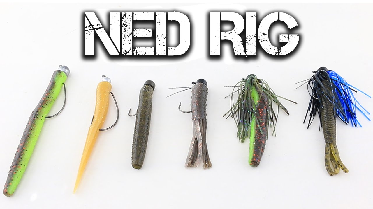 fishing with the ned rig youtube