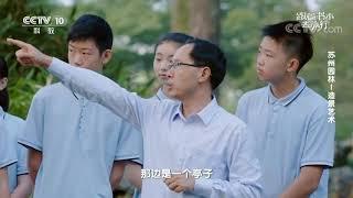 [跟着书本去旅行]苏州园林造景艺术之对景| 课本中国
