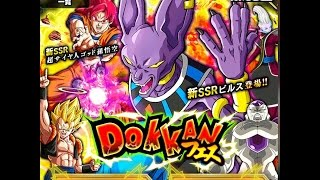 A godly pull! beerus dokkan festival summoning event: (jp) dragon ball z dokkan battle