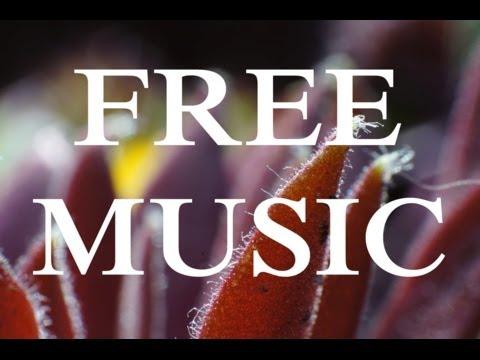 huma-huma---hydra-[ambient-/-calm]-free-&-no-copyright