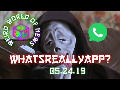 Weird World of News - WhatsReallyApp