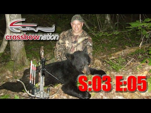 Maine Black Bear Hunt with Excalibur Crossbow