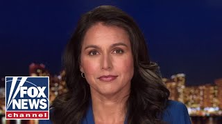 Tulsi Gabbard: Proposed domestic terrorism laws 'directly undermine' freedom