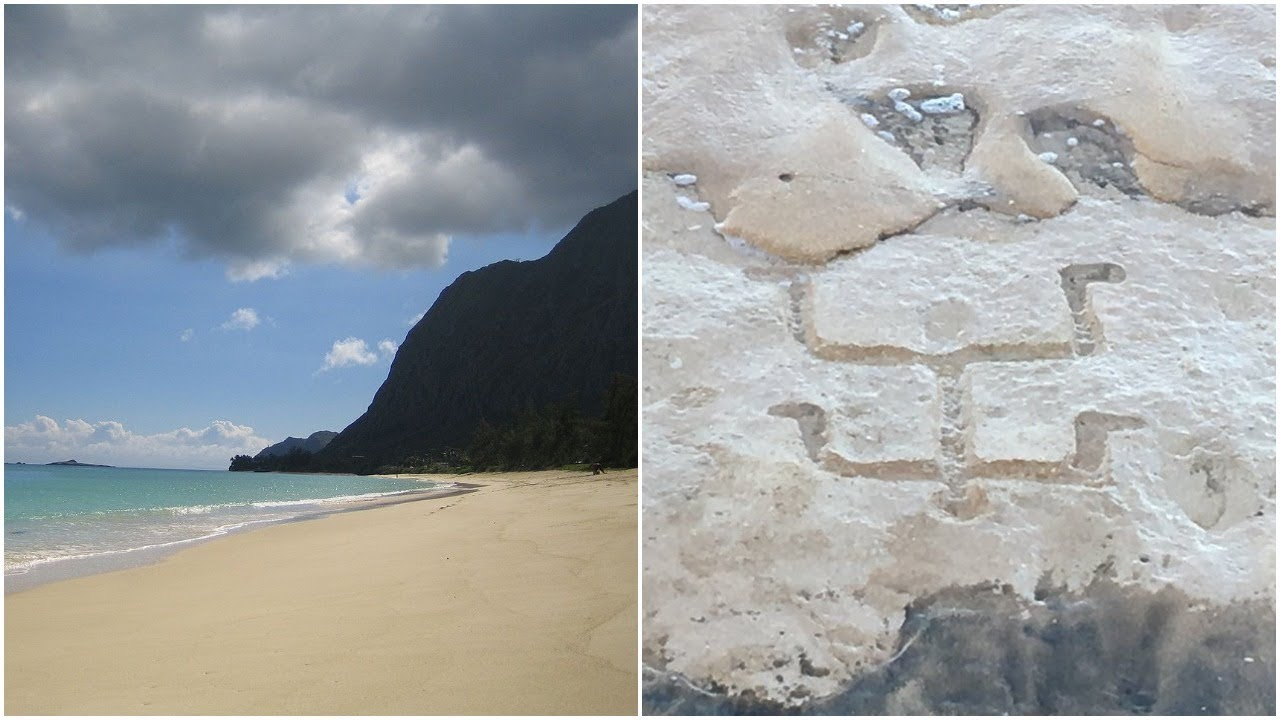 tourists-were-on-a-beachin-hawaii-when-a-400-year-old-secret-was-revealed-beneath-the-sands