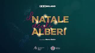 Dalle piazze alle case, è il Natale di Milano