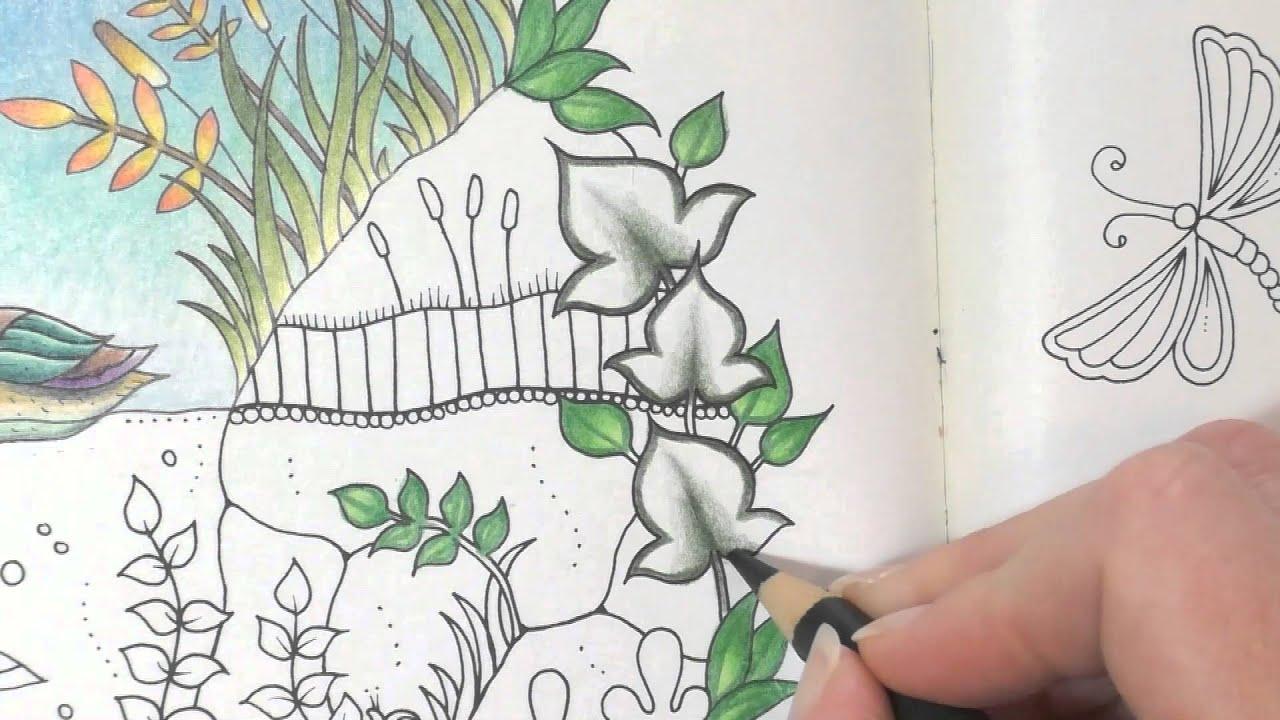 Colouring Tutorial Colour With Peta Duck Pond Part 3