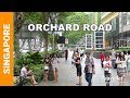 Singapore Attractions  Orchard Road walking tour  Singapore shopping street  Top things to do