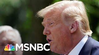 Mara Gay: Trump's Covid-19 Failure Is 'literally Killing Americans' | The 11th Hour | Msnbc