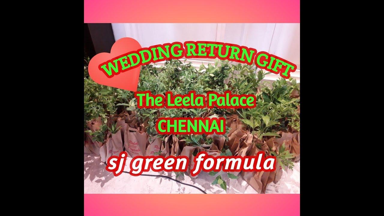 Wedding Return Gift Shops In Chennai: Wedding Return Gift Plants
