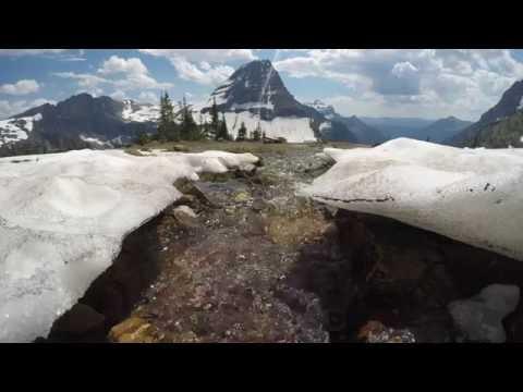 Streams at Lost Lake | Glacier National Park | June 30, 2016