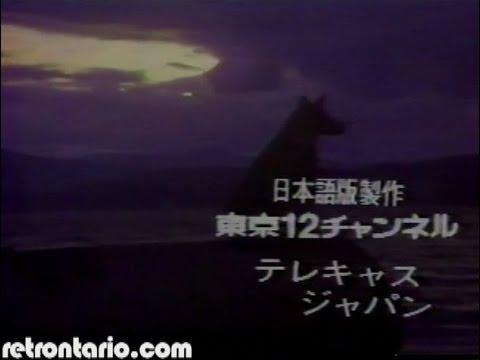 The Littlest Hobo [Japanese dubbed version] (1980)