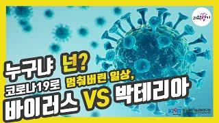 [KISTI의 과학향기] 바이러스와 박테리아 무엇이 다…