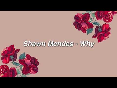 Shawn Mendes - Why { Lyrics }
