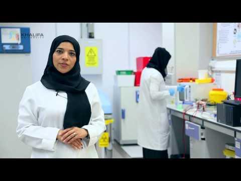 Khalifa University Program Profile: B.Sc. Biomedical Engineering