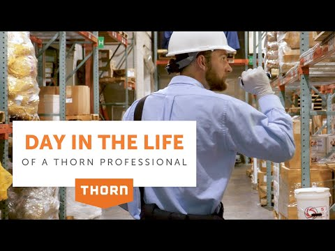 A Day in the Life of a Thorn Pest Professional