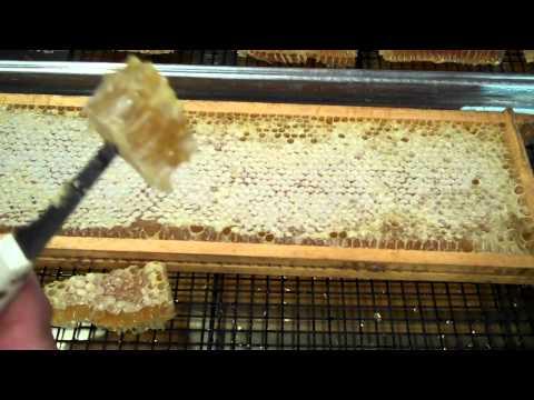 How to eat Comb Honey
