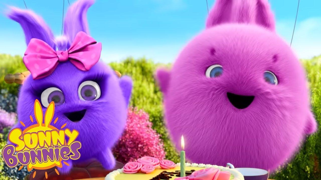 SUNNY BUNNIES - Bunny Birthday   Season 1   Cartoons for Children