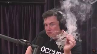 Илон Маск курит в прямом эфире (русская озвучка)