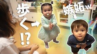 【可愛すぎ注意】ルネちゃんついに歩く!?!?でもそれに嫉妬するルイwwwVlog thumbnail