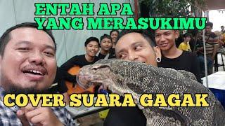 Download ENTAH APA YANG MERASUKIMU (COVER SUARA GAGAK AJA)