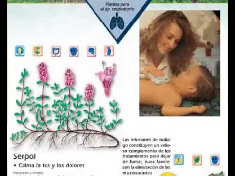 video-libro-enciclopedia-de-las-plantas-medicinales-editorial-safeliz-reforma-pro-salud